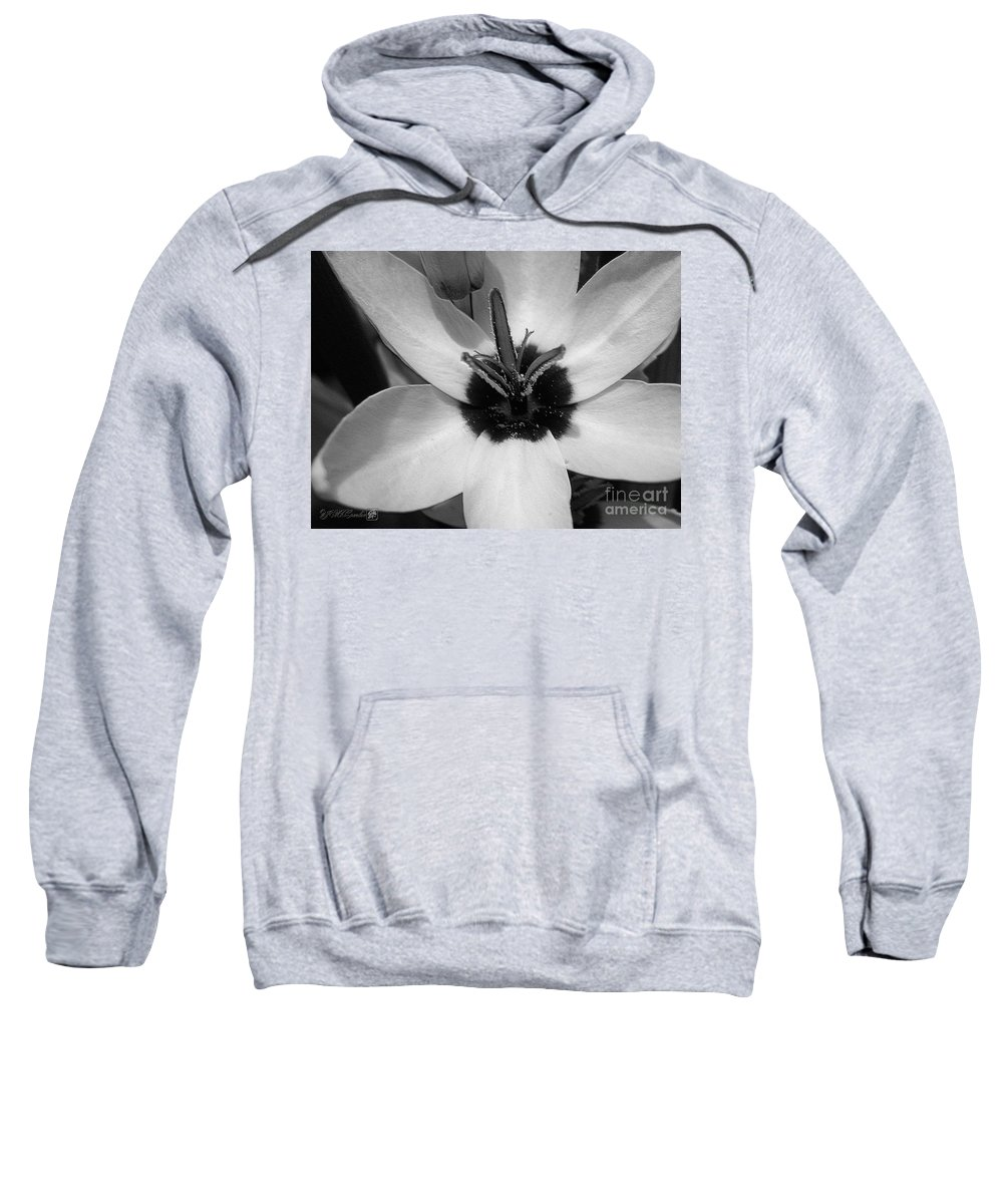 Ixia Sweatshirt featuring the photograph Corn Lily Named Giant by J McCombie
