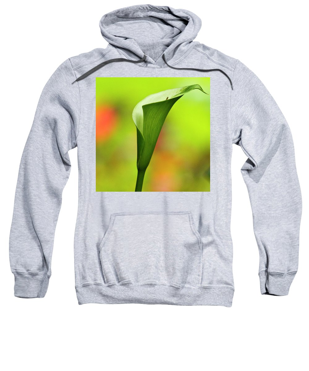 Calla Sweatshirt featuring the photograph Green Calla Lily by Heiko Koehrer-Wagner