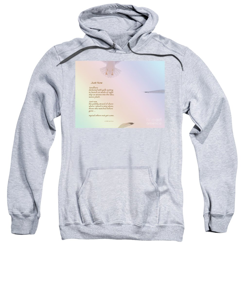Seagull Sweatshirt featuring the photograph Just Now by Ann Horn