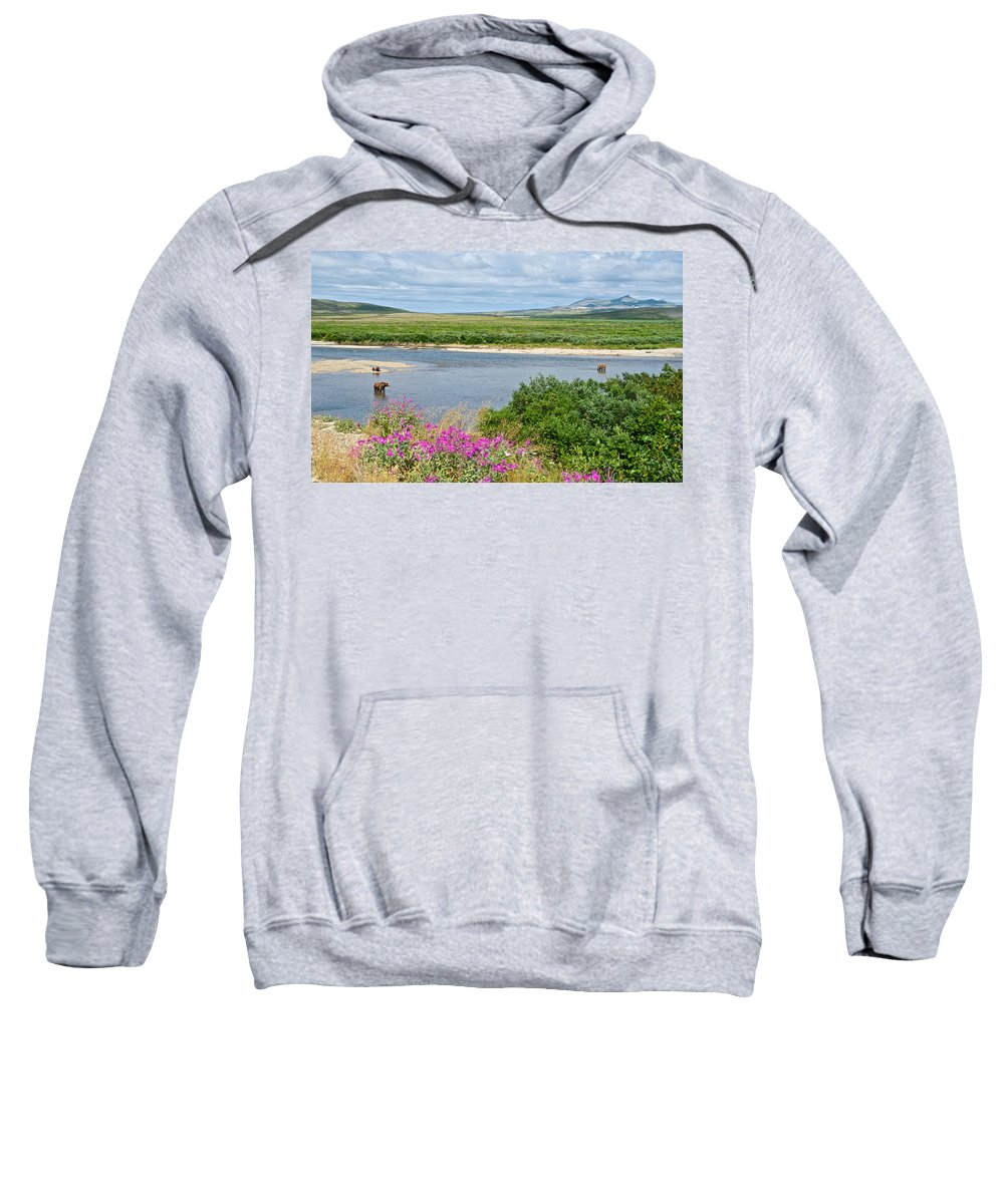 2-lay Of The Land-grizzly Bears In Moraine River Sweatshirt featuring the photograph 2-lay Of The Land-grizzly Bears In Moraine River In Katmai Np-ak by Ruth Hager