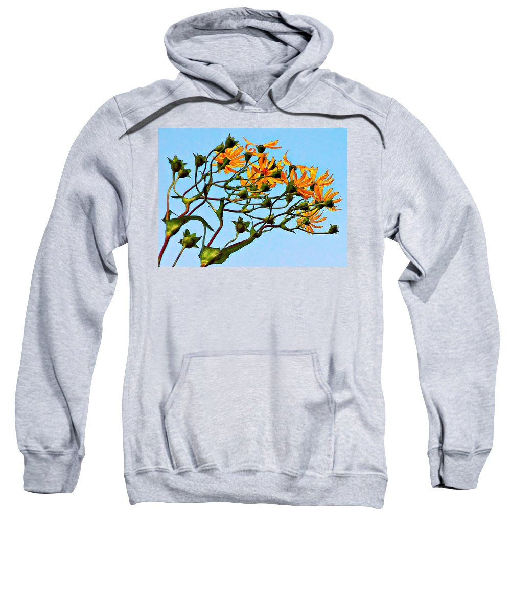 Flowers Sweatshirt featuring the photograph Party Girls by Steve Harrington