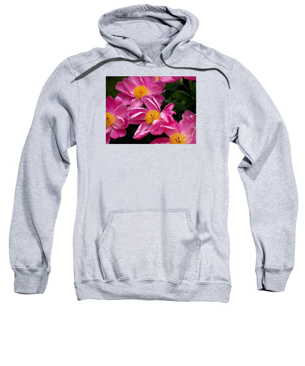 Peony Sweatshirt featuring the photograph Pink Petals by Eunice Miller