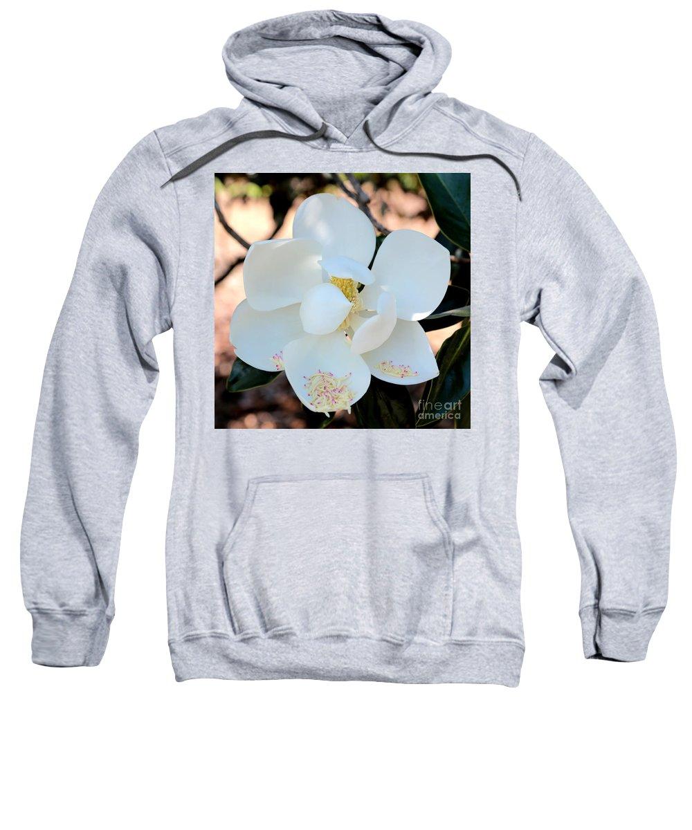Magnolia Sweatshirt featuring the photograph Sweet Magnolia by Carol Groenen