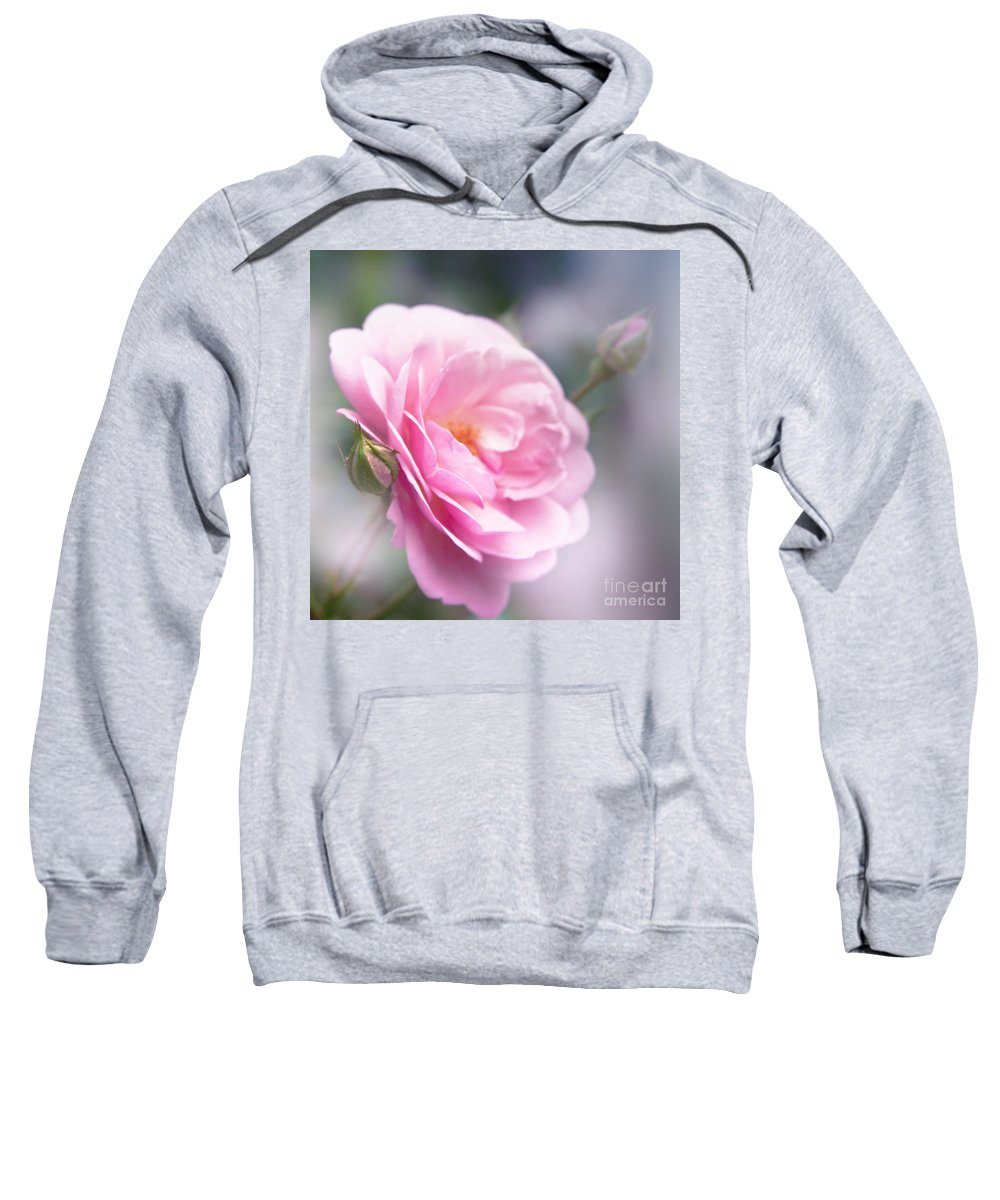 The Divine Child Sweatshirt featuring the photograph The Divine Child by Sharon Mau