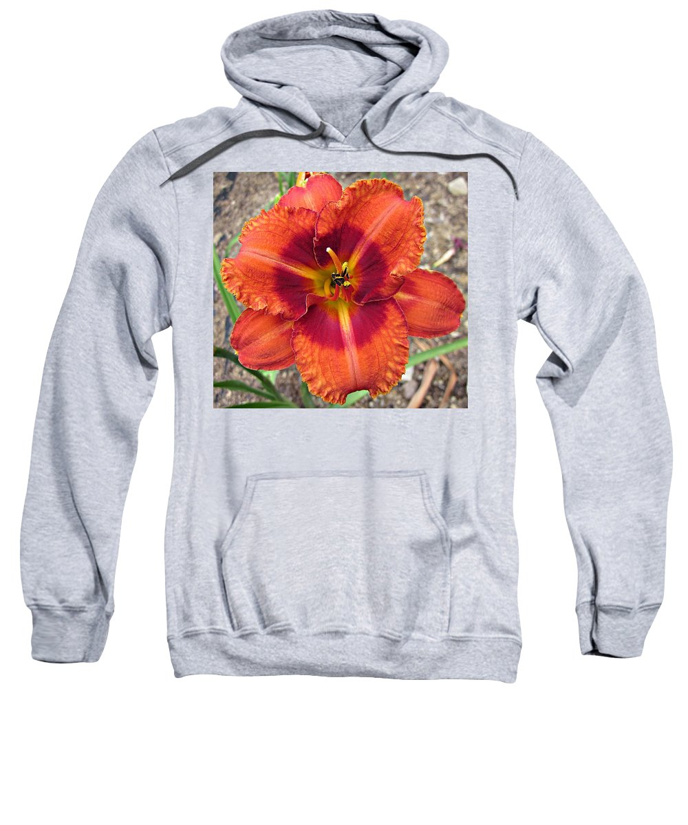 Tigger Daylily Sweatshirt featuring the photograph Tigger Daylily by MTBobbins Photography