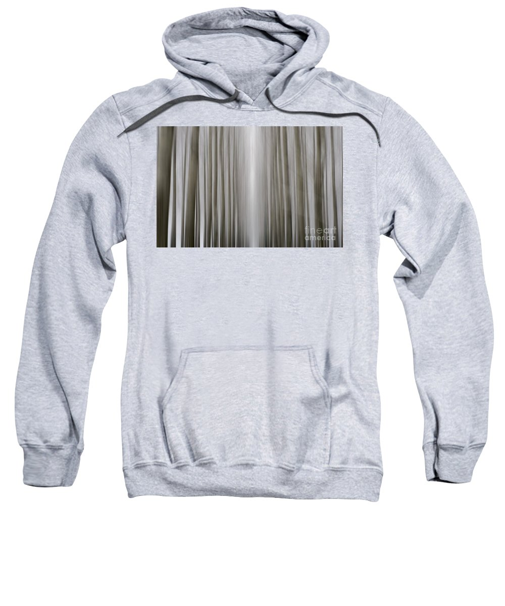 Trees Sweatshirt featuring the photograph Trees by Mats Silvan