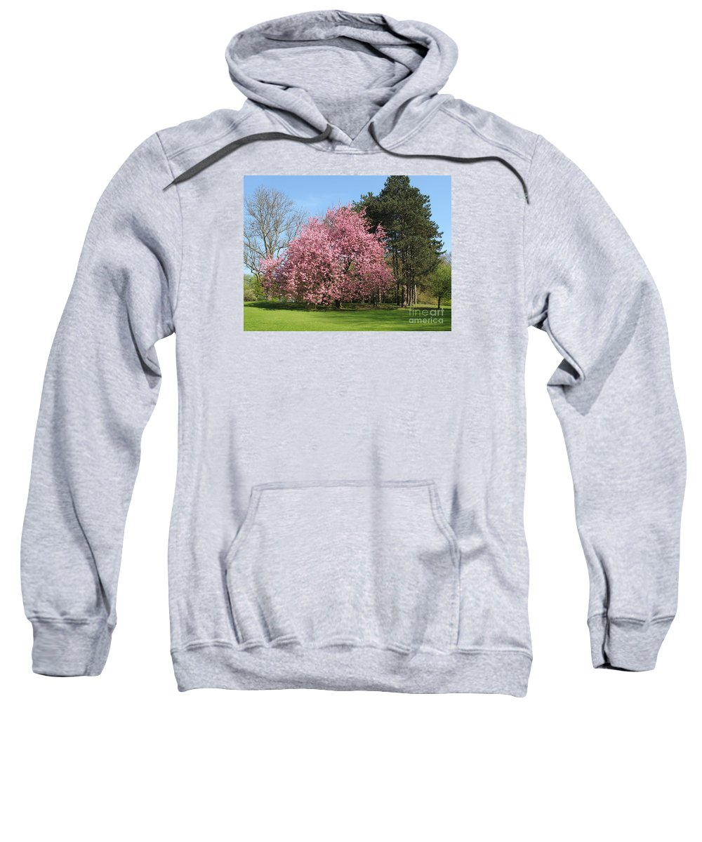 Cherry Tree Sweatshirt featuring the photograph Cherry Tree by Christiane Schulze Art And Photography