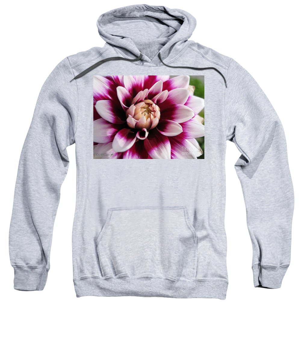 Dahlia Sweatshirt featuring the digital art Dahlia Named Mystery Day by J McCombie