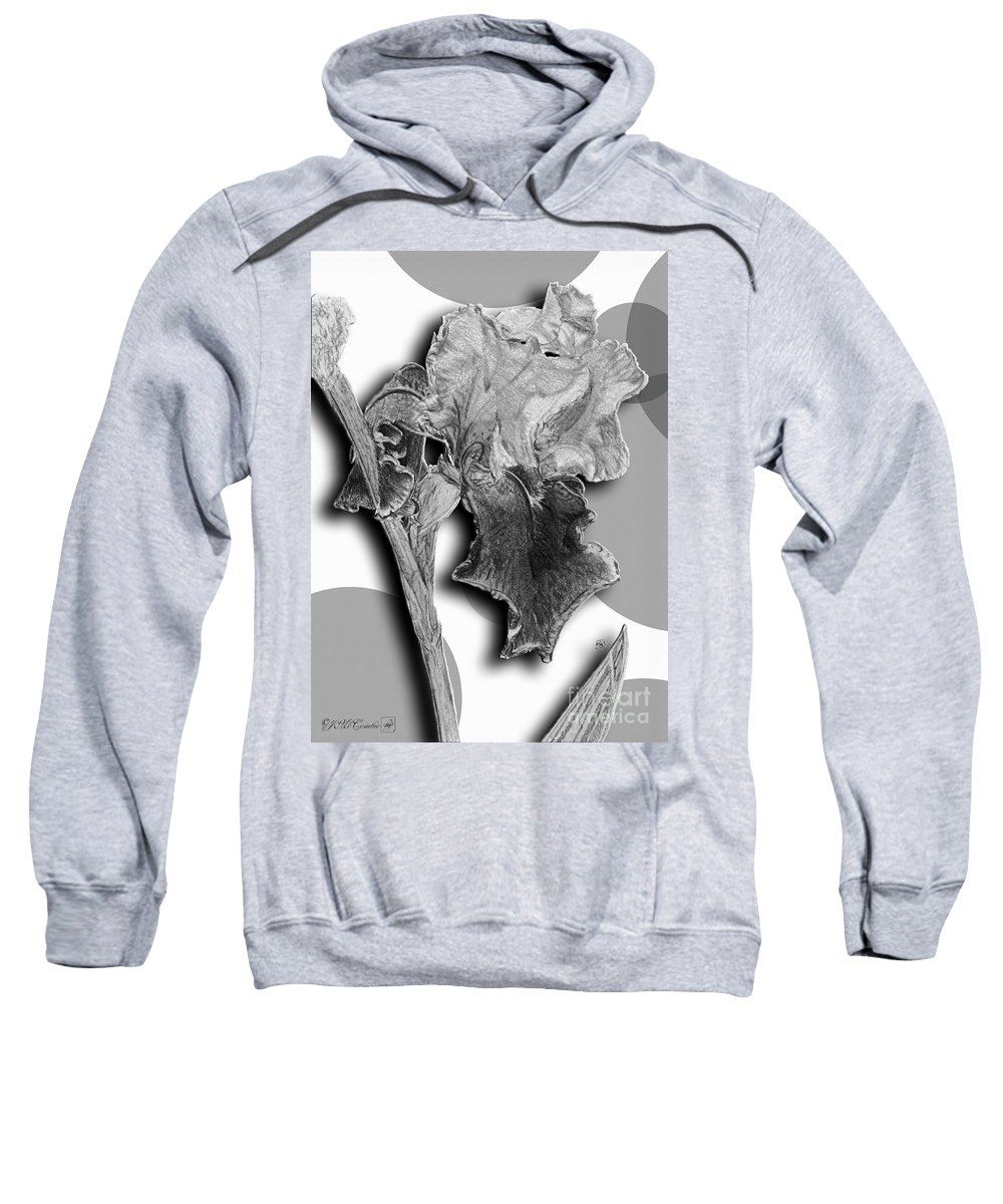 Mccombie Sweatshirt featuring the painting Ancient Echoes by J McCombie