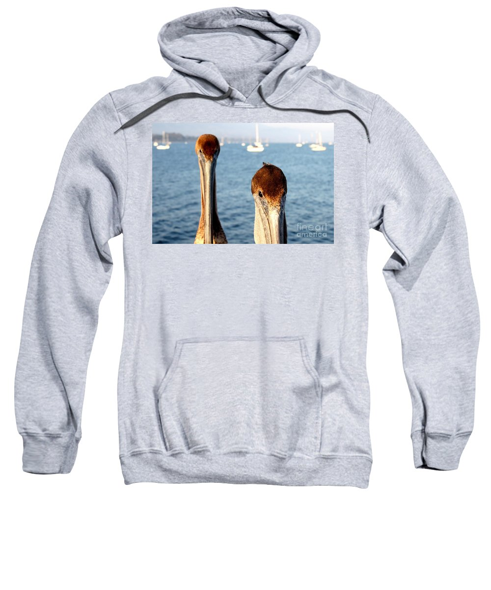 Santa Barbara Sweatshirt featuring the photograph California Pelicans by Henrik Lehnerer