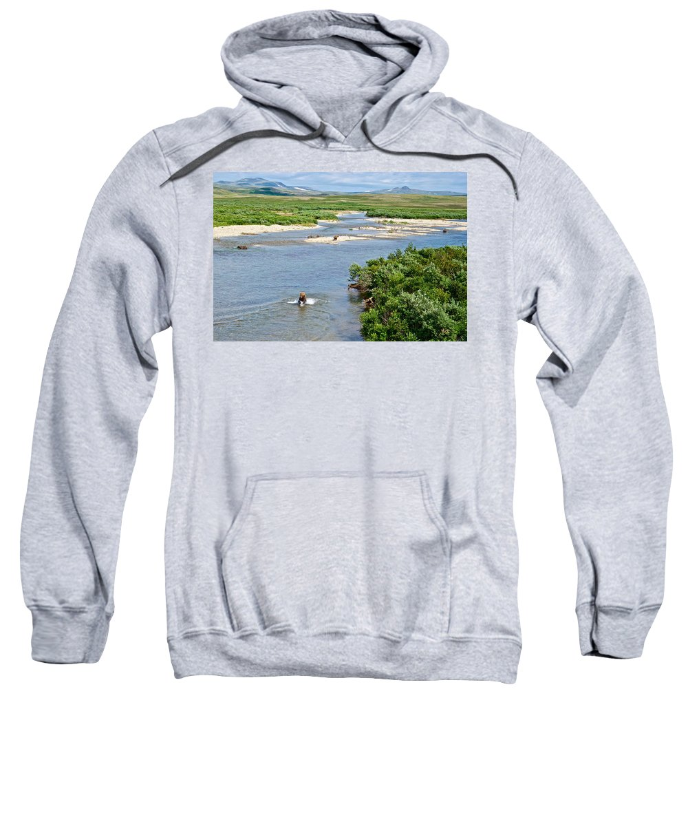 Lay Of The Land Sweatshirt featuring the photograph 4-lay Of The Land Many Grizzly Bears In Moraine River In Katmai National by Ruth Hager