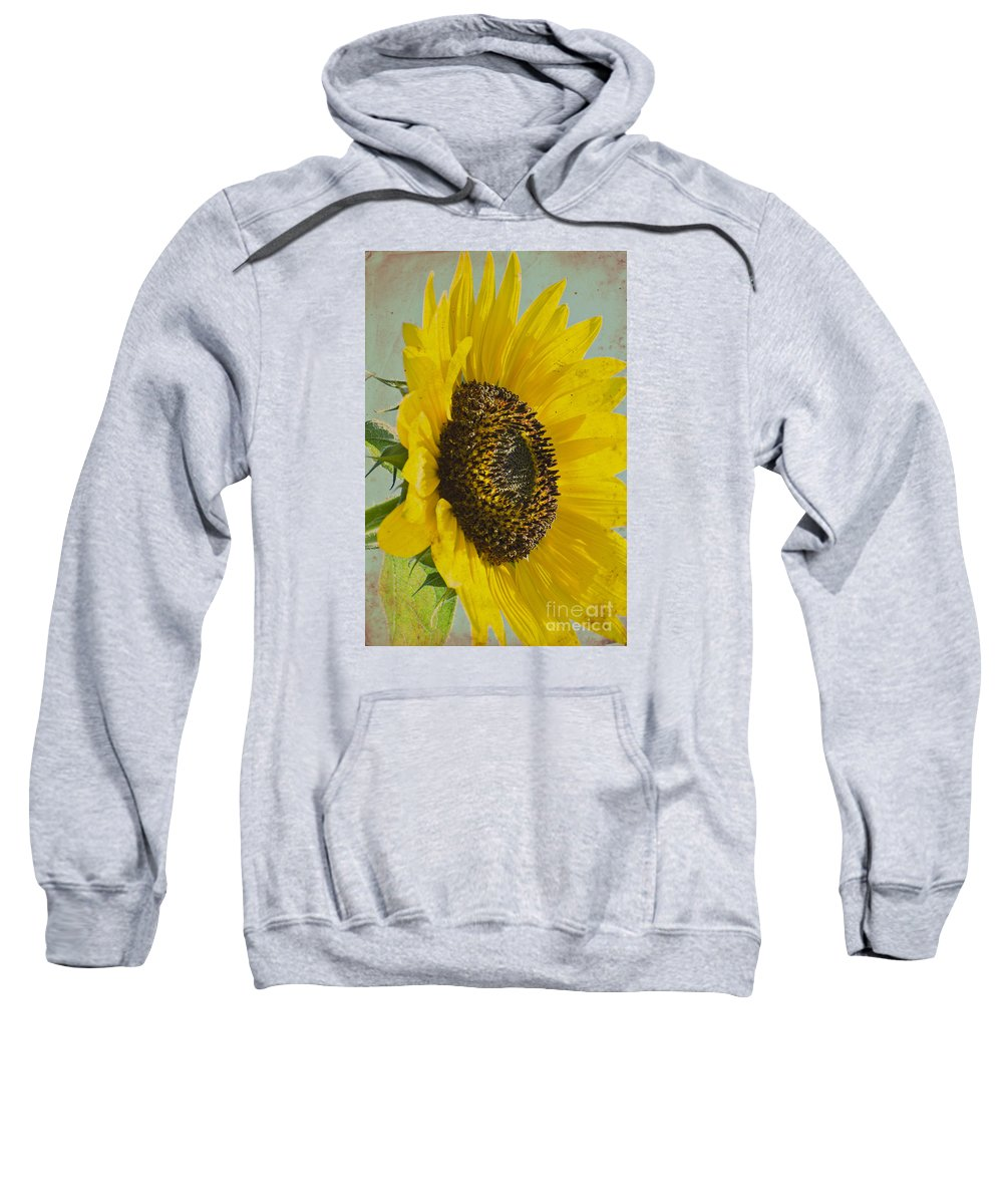 Sunflower Sweatshirt featuring the photograph Sunflower by Jim And Emily Bush