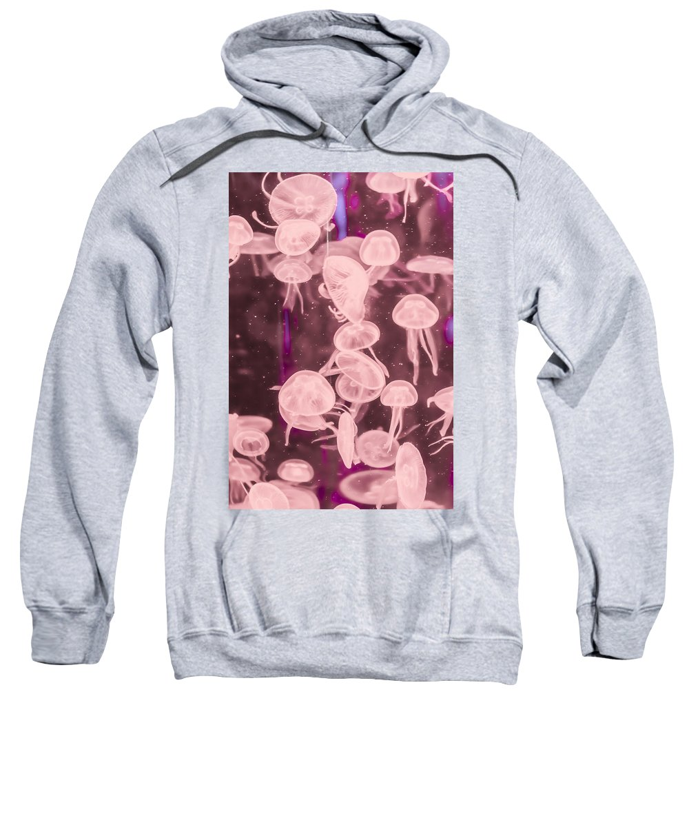 Animal Sweatshirt featuring the photograph Jelly Fish by Jijo George