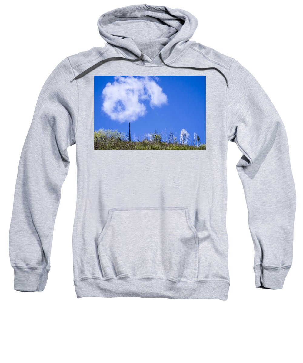 Myrtle Creek Drainage Sweatshirt featuring the photograph A Cotton-candy Day by Albert Seger