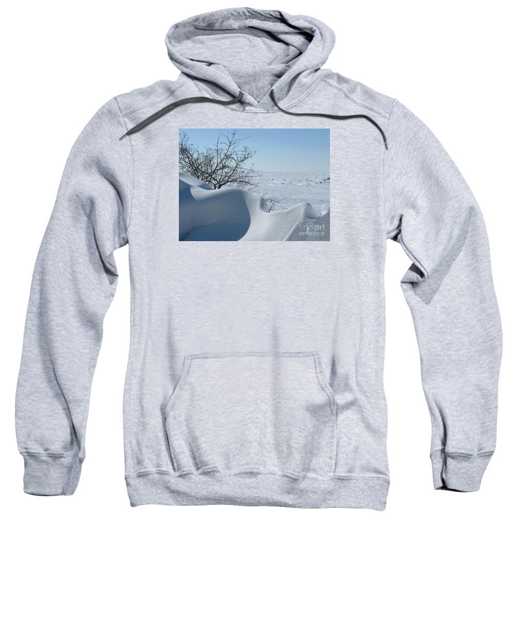 Winter Sweatshirt featuring the photograph A Gentle Beauty by Ann Horn