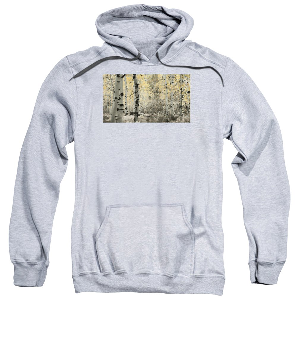 Aspens Sweatshirt featuring the photograph A Wisp Of Gold by Don Schwartz