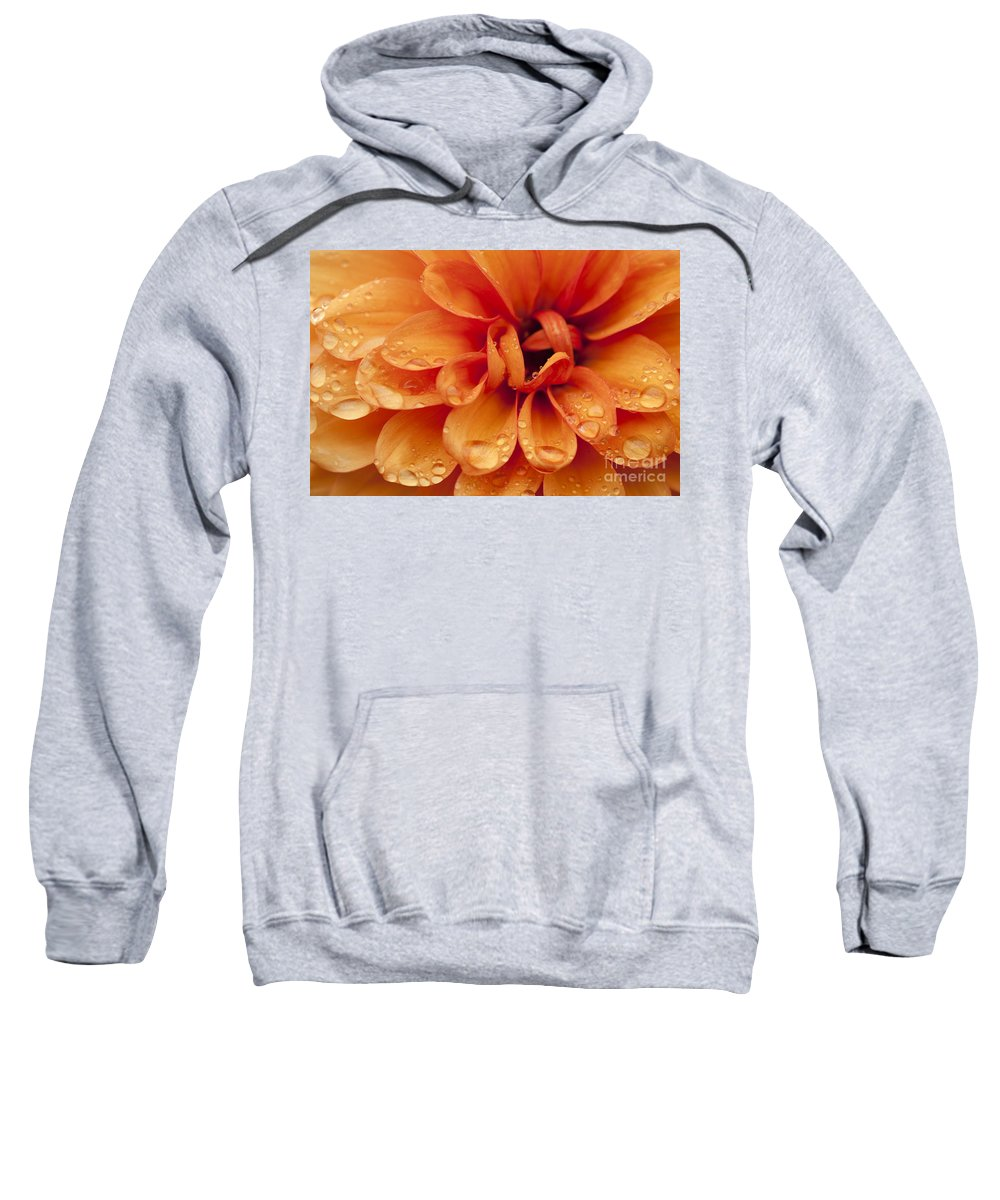 Abstract Sweatshirt featuring the photograph After The Rain by Anne Gilbert