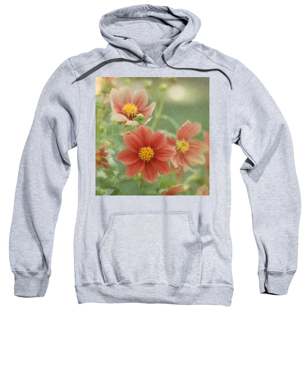 Flower Sweatshirt featuring the photograph After The Rain by Kim Hojnacki