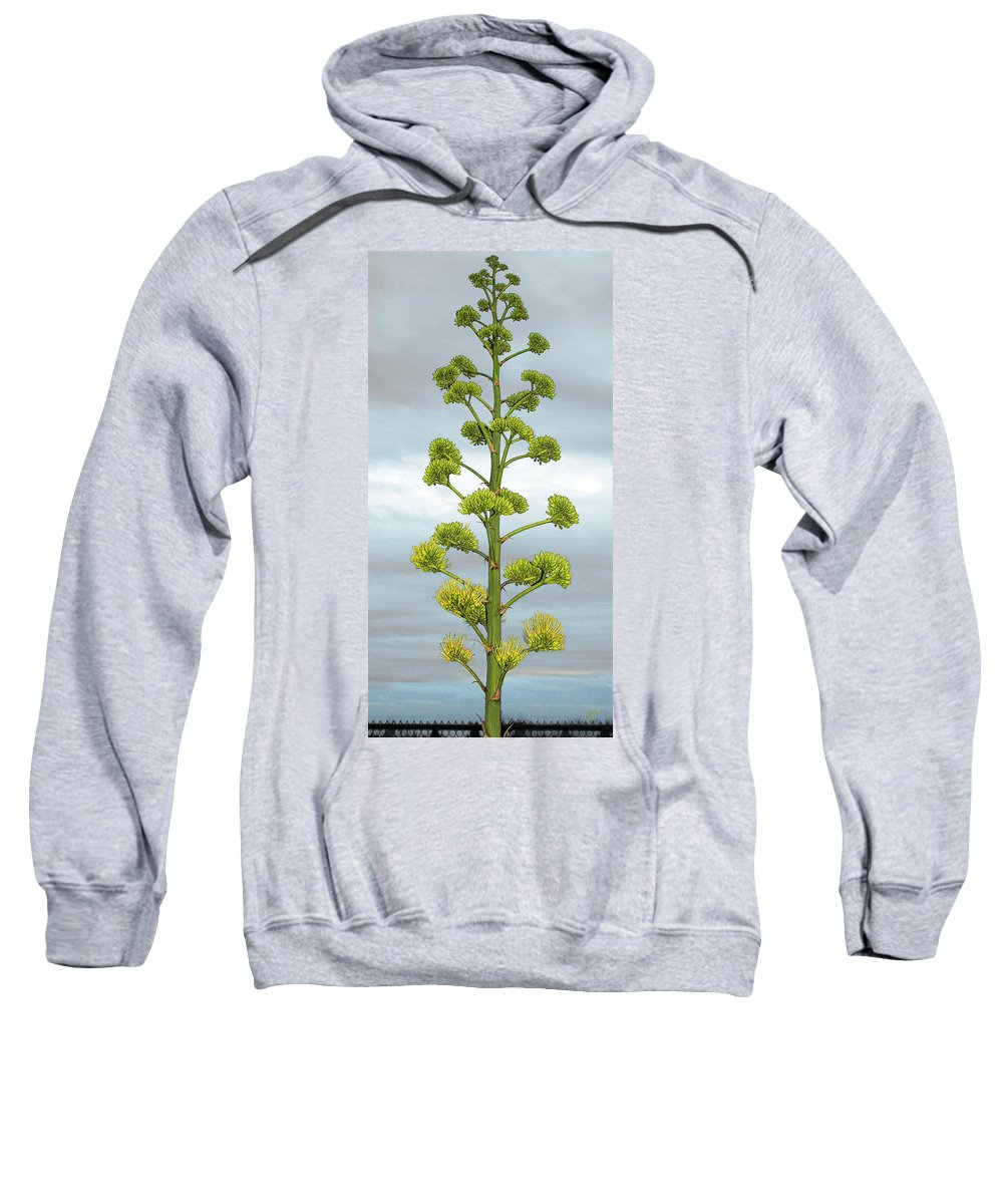 Agave Bloom Sweatshirt featuring the photograph Agave Flower Spike by Ben and Raisa Gertsberg