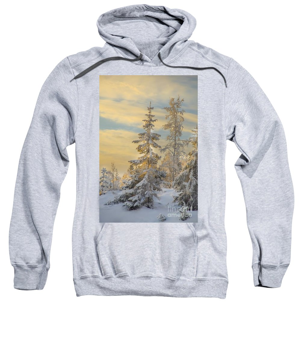 Landscape Sweatshirt featuring the photograph Alone But Strong by Rose-Maries Pictures