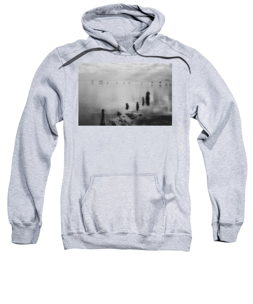 Pelicans Sweatshirt featuring the photograph America's Dead Sea by Hugh Smith