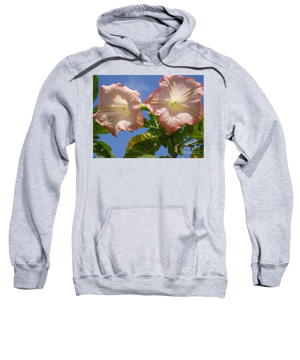 Flowers Sweatshirt featuring the photograph Angel's Trumpet by Cheryl Cutler