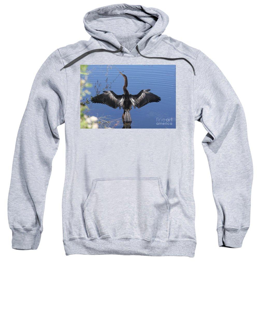Anhinga Sweatshirt featuring the photograph Anhinga Sunbathing by Christiane Schulze Art And Photography