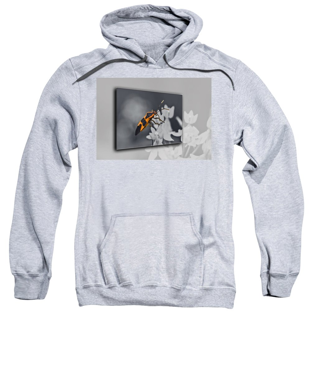 Milkweed Bug Sweatshirt featuring the photograph Another World by Carolyn Marshall