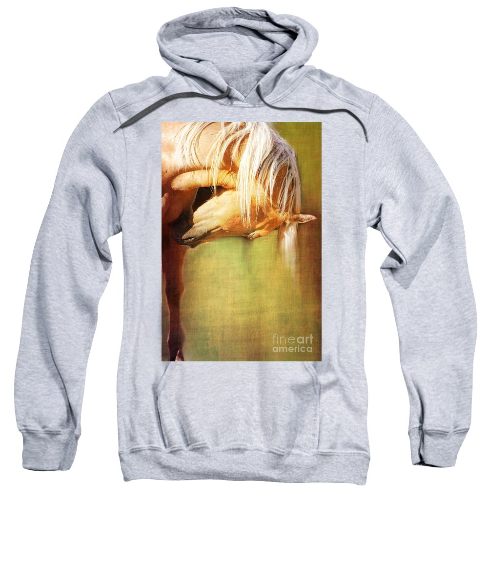 Horse Sweatshirt featuring the photograph Golden by Annette Coady