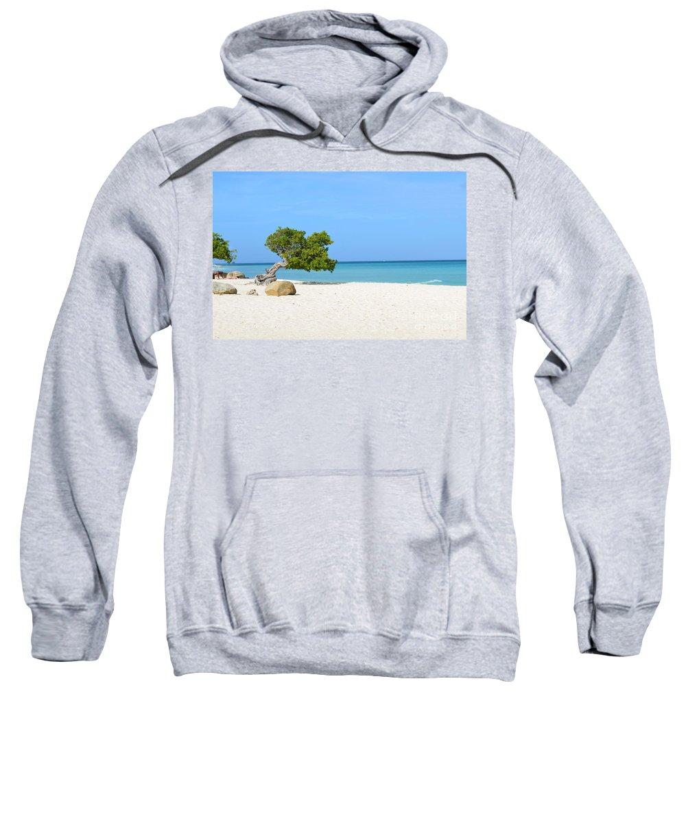 Divi Sweatshirt featuring the photograph Aruba Divi Divi Tree by DejaVu Designs
