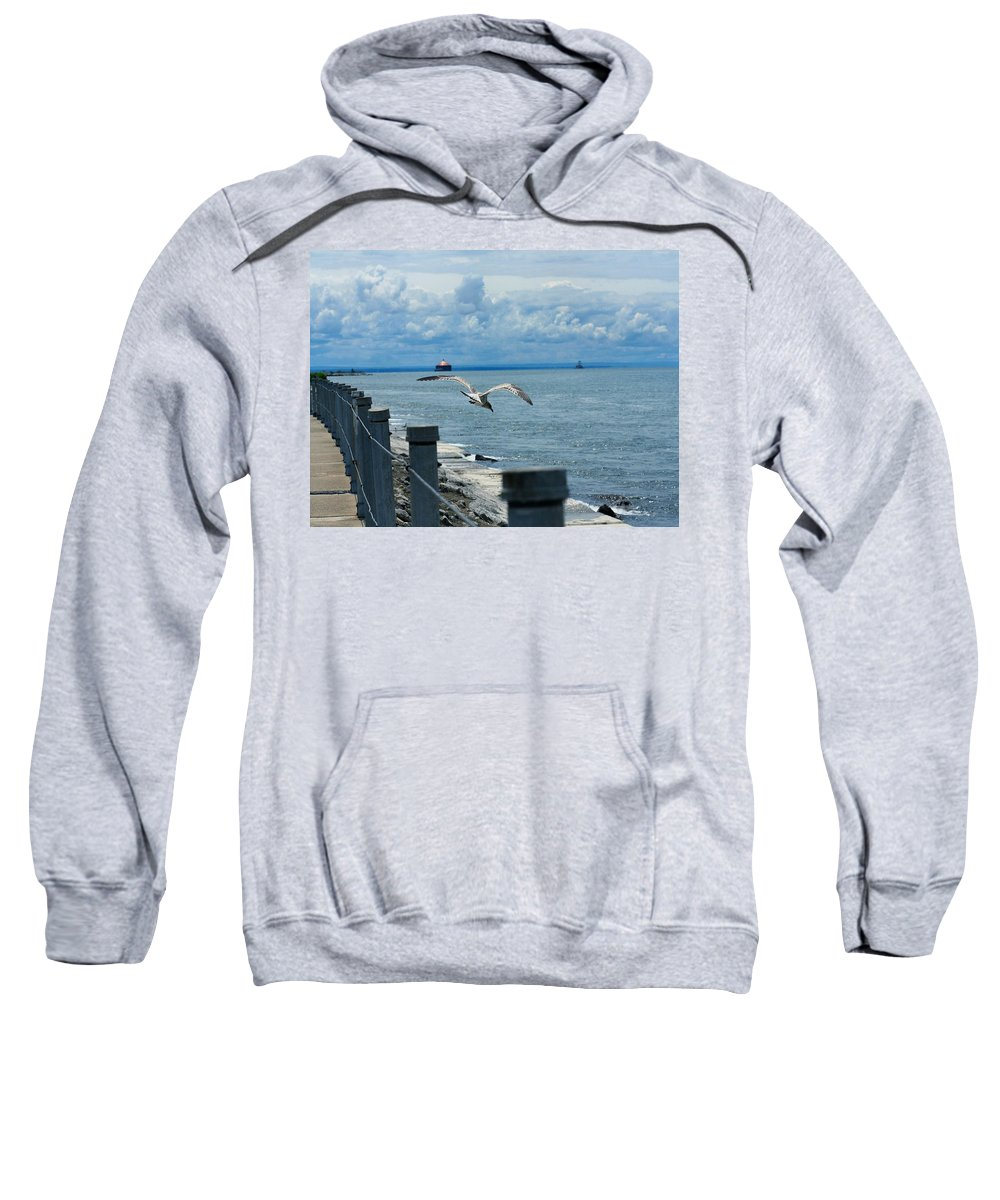 Seagull Sweatshirt featuring the photograph As The Seagull Flies by Gothicrow Images