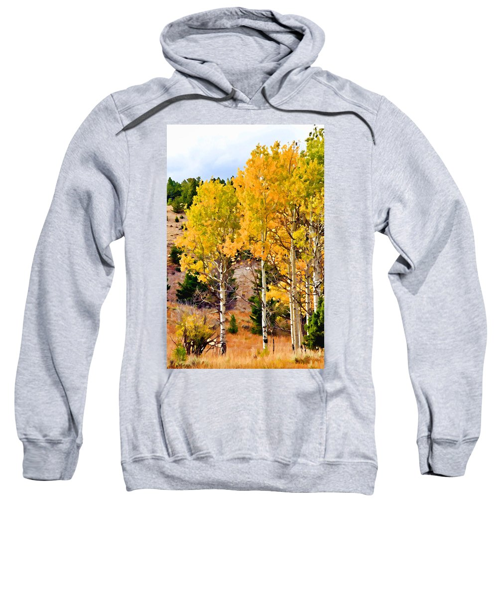 Aspen Tree Sweatshirt featuring the photograph Aspen Meadows II by Athena Mckinzie