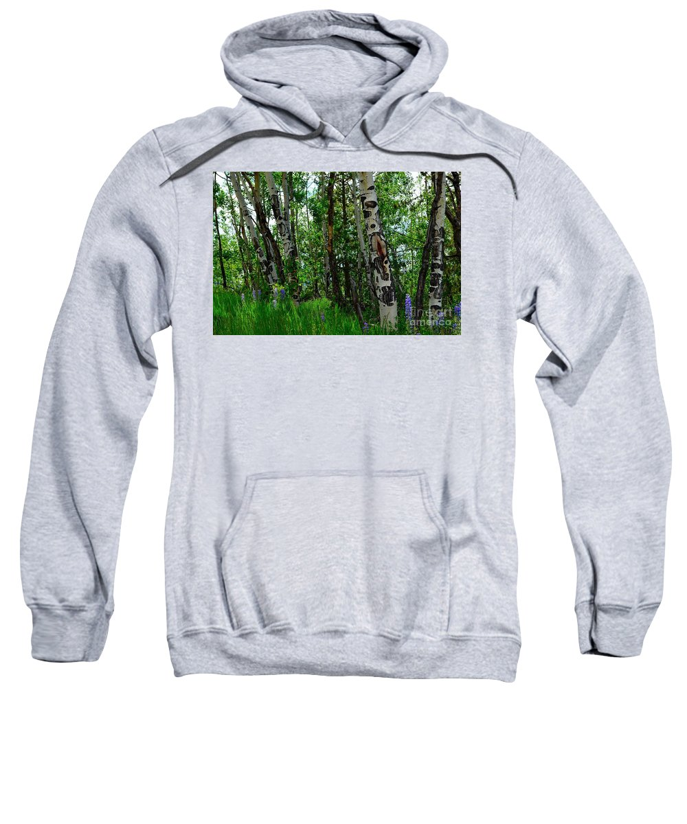 Trees Sweatshirt featuring the photograph Aspen Trees by Crystal Miller