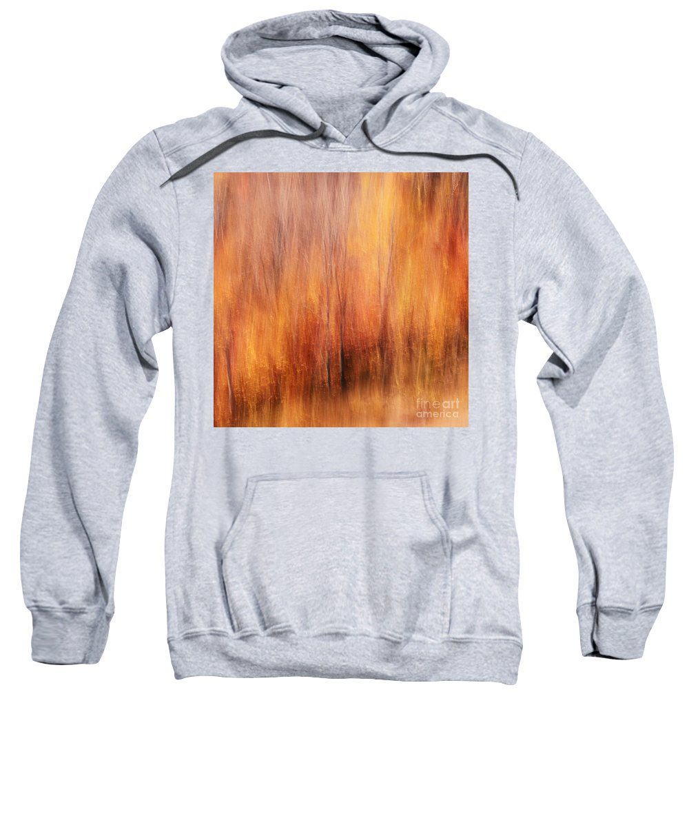 Autumn Sweatshirt featuring the photograph Autumn Canvas by Aimelle