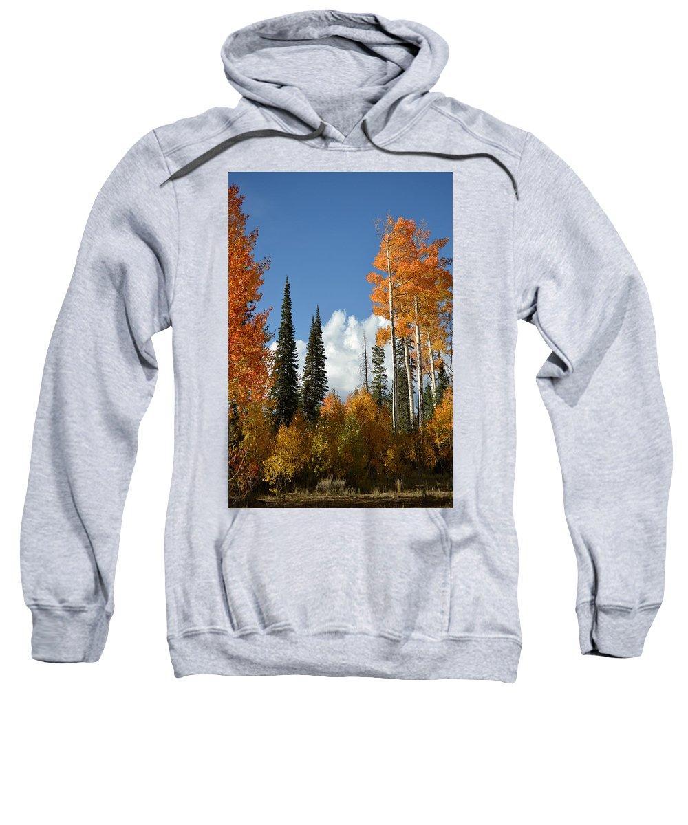Autumn Sweatshirt featuring the photograph Autumn In Utah by Stan Scott