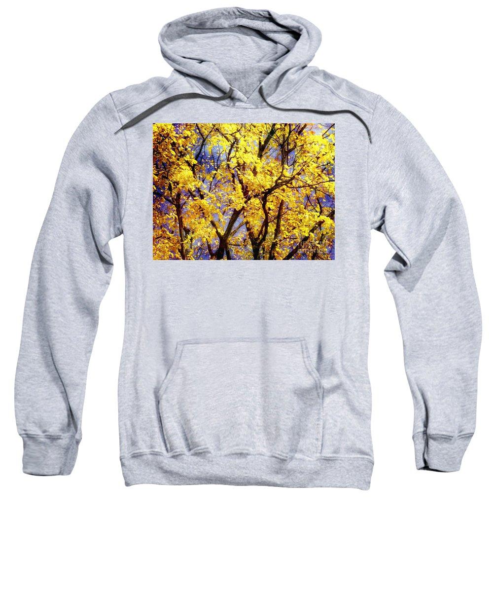 Autumn Sweatshirt featuring the photograph Autumn by Justyna JBJart