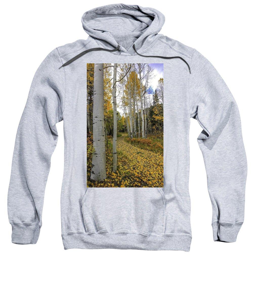 Landscape Sweatshirt featuring the photograph Autumn Stroll by Bill Sherrell