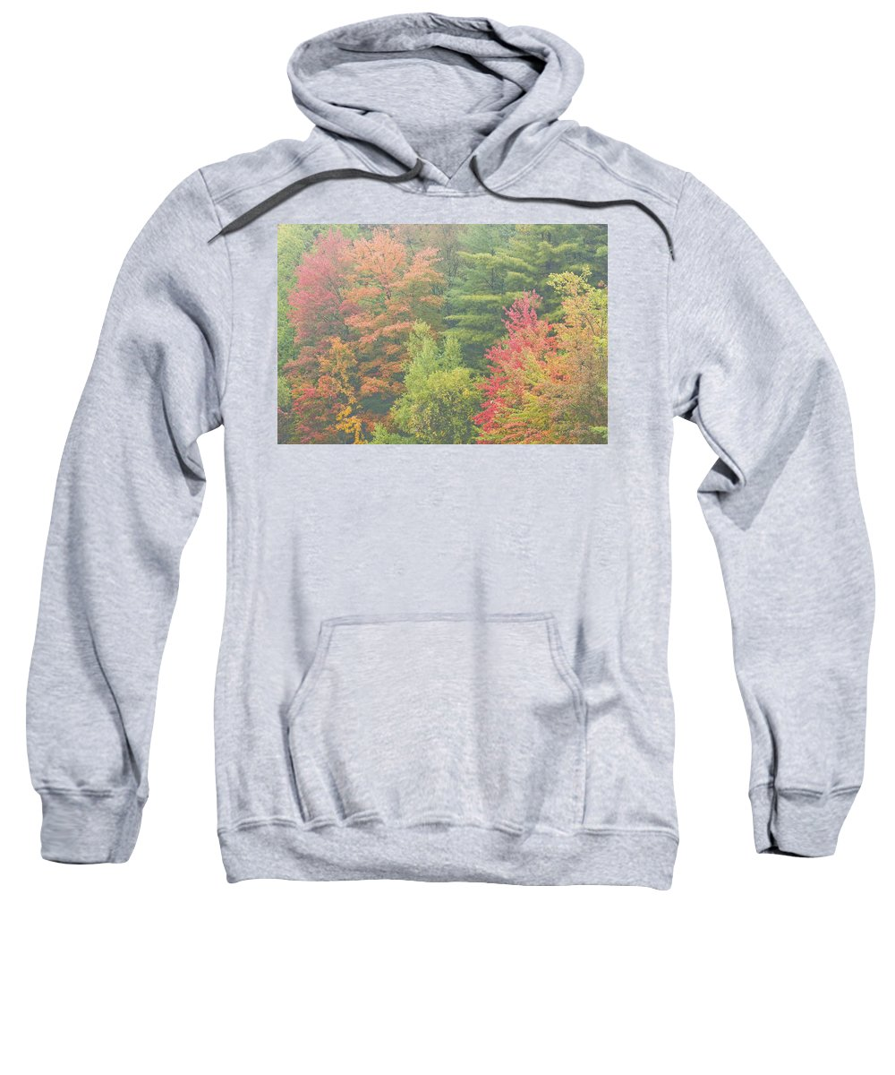 Fall Sweatshirt featuring the photograph Autumntrees And Fog by Keith Webber Jr