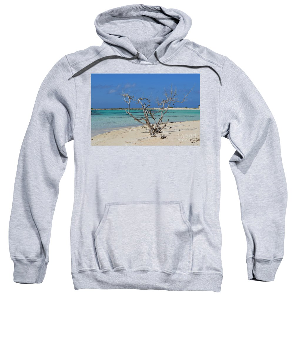 Baby Beach Sweatshirt featuring the photograph Baby Beach With Driftwood by DejaVu Designs