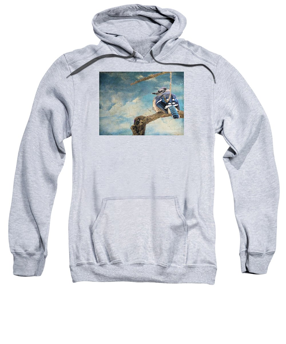 Blue Jay Sweatshirt featuring the photograph Baby Blue Jay In Winter by Janette Boyd