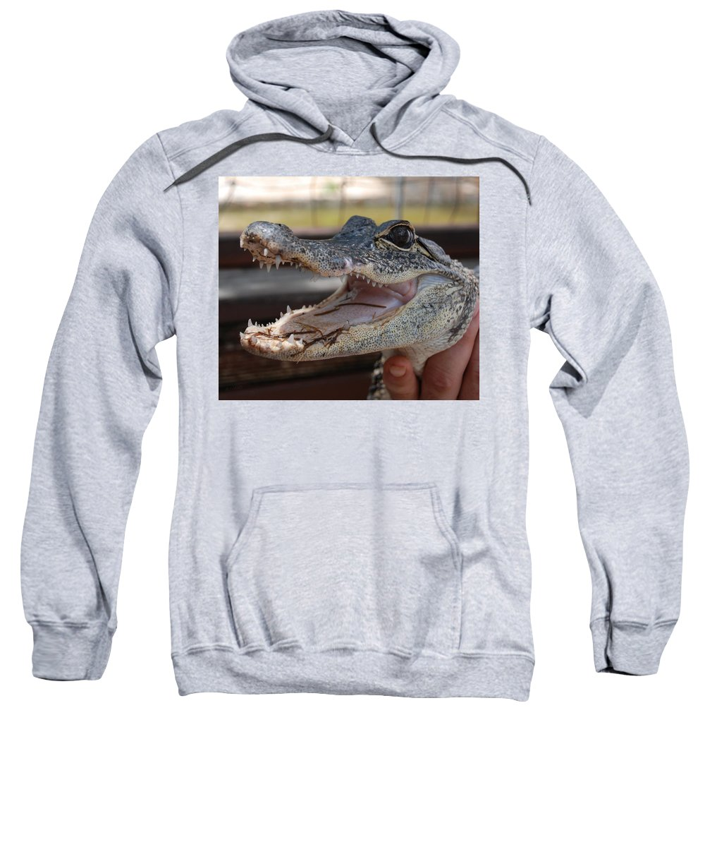 Macro Sweatshirt featuring the photograph Baby Gator by Rob Hans