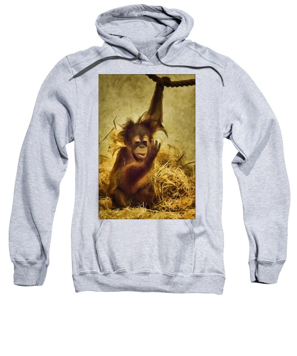 Orangutan Sweatshirt featuring the photograph Baby Orangutan At The Denver Zoo by Priscilla Burgers