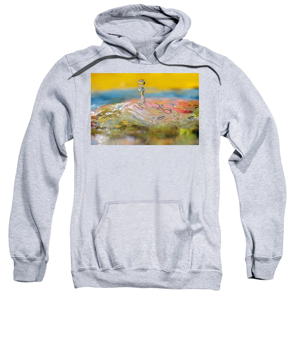 Abstract Sweatshirt featuring the photograph Balancing Act by Lisa Knechtel
