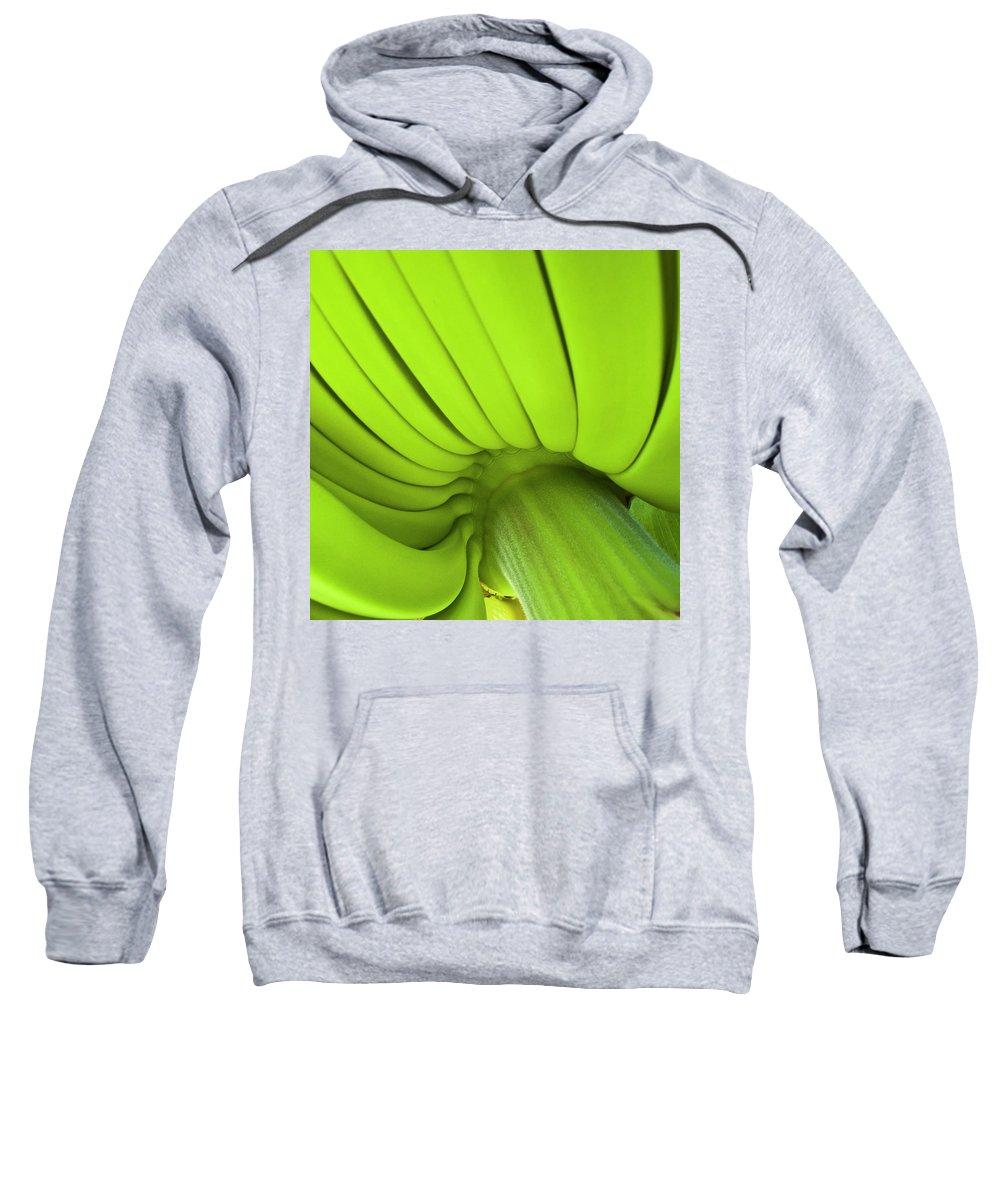 Nature Sweatshirt featuring the photograph Banana Bunch by Heiko Koehrer-Wagner