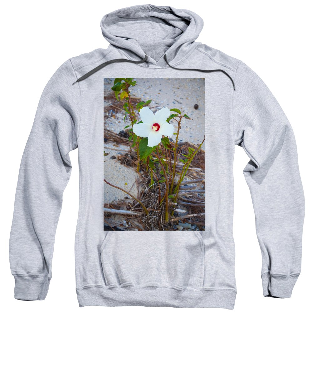 Beach Sweatshirt featuring the photograph Beach Flower by Bill Cannon