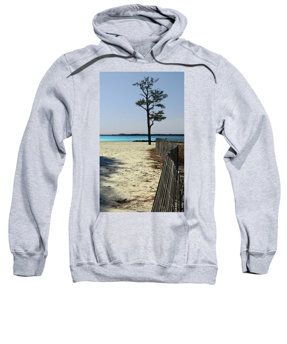 Delaware Sweatshirt featuring the photograph Beach Pine by Skip Willits