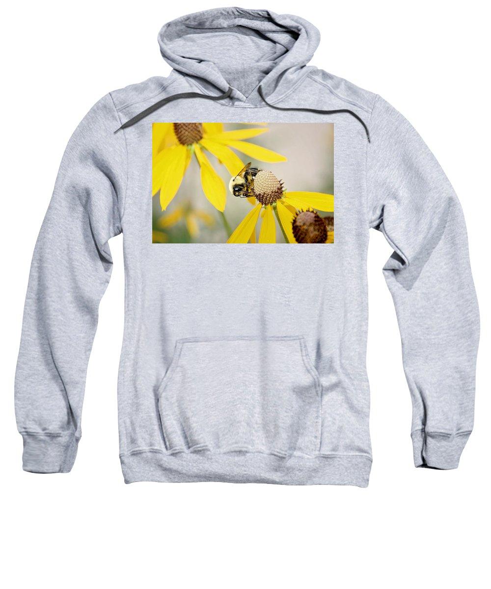 Flowers Sweatshirt featuring the photograph Bee On Flower by Deb Buchanan