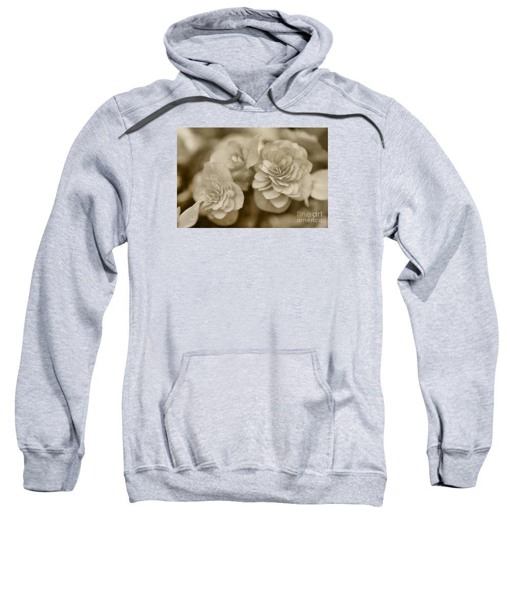 Begonia Sweatshirt featuring the photograph Begonias In Sepia by Olga Hamilton