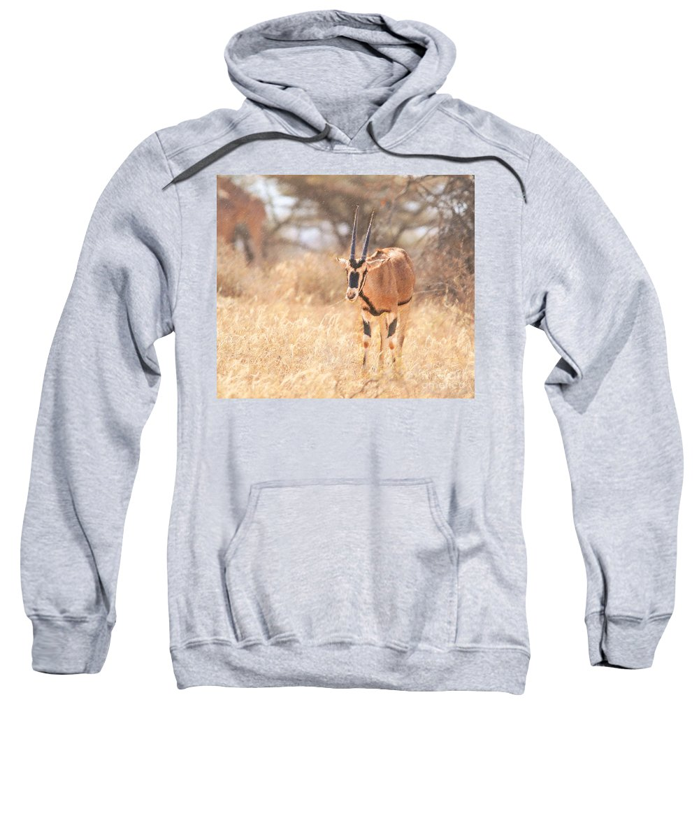 Beisa Oryx Sweatshirt featuring the digital art Beisa Oryx Orxy Beisa by Liz Leyden