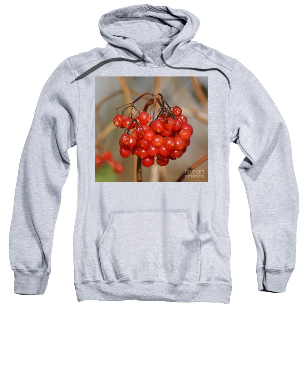 Autumn Sweatshirt featuring the photograph Berries by Carol Lynch